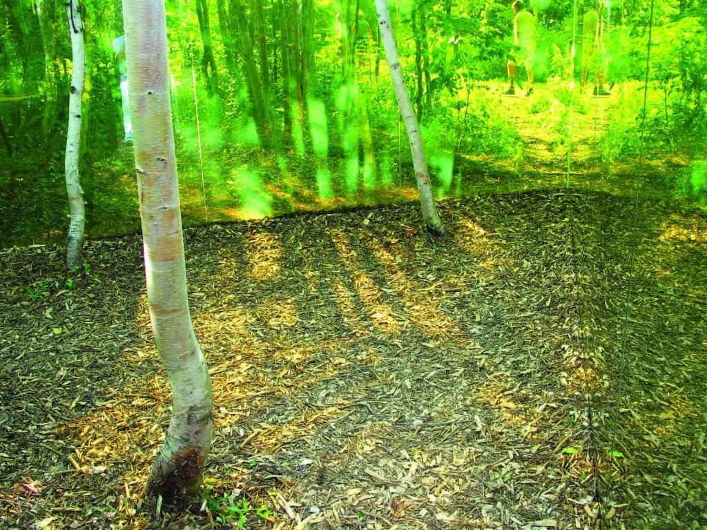colored-reflexions-garden-installation-canada-2